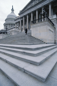 people-politico-steps-government-building