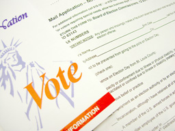 people-politicpolitics-voter-info